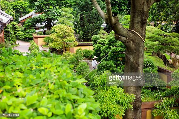 Nan Lian Garden maintenance