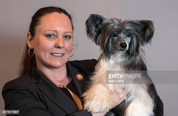 Nanette Lloyd from North Wales poses with her dog Velvet a Chinese Crested Powderpuff during the Toy and Utility day of the Crufts dog show at the...