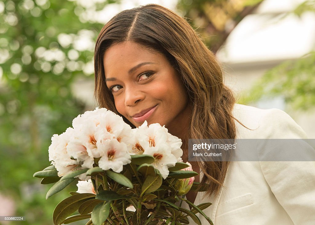 Naomie Harris attends Chelsea Flower Show press day at Royal Hospital Chelsea on May 23, 2016 in London, England. The show, which has run annually since 1913 in the grounds of the Royal Hospital Chelsea, is open to the public from 24-28 May.