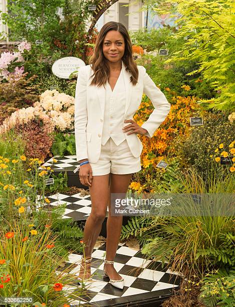 Naomie Harris attends Chelsea Flower Show press day at Royal Hospital Chelsea on May 23 2016 in London England The show which has run annually since...