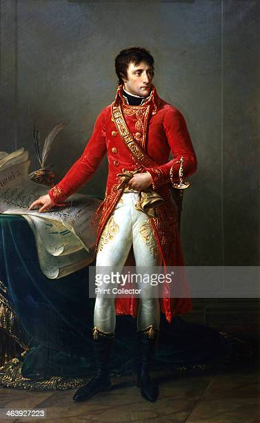 Napoleon Bonaparte as First Consul 17991821 Portrait of Napoleon as First Consul In 1802 a plebiscite granted him the position for life