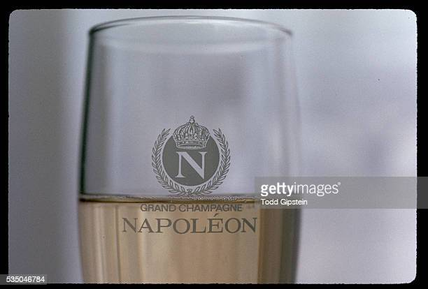 Napoleon Champagne Logo on Glass
