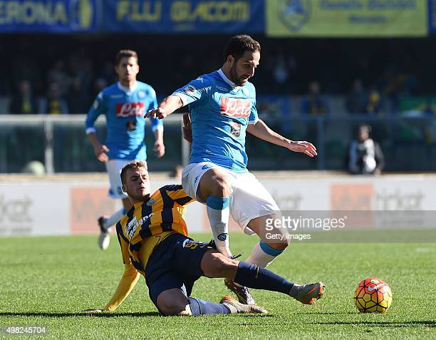 Napoli's player Gonzalo Higuain vies with Hellas Verona player Luca Checchin during the Serie A match between Hellas Verona FC and SSC Napoli at...