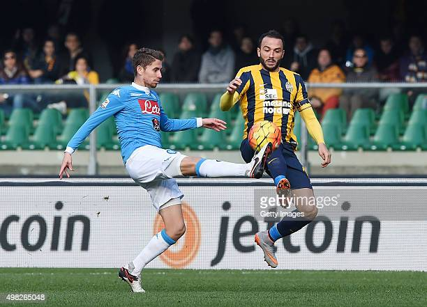 Napoli's player Jorginho vies with Hellas Verona player Giampaolo Pazzini during the Serie A match between Hellas Verona FC and SSC Napoli at Stadio...