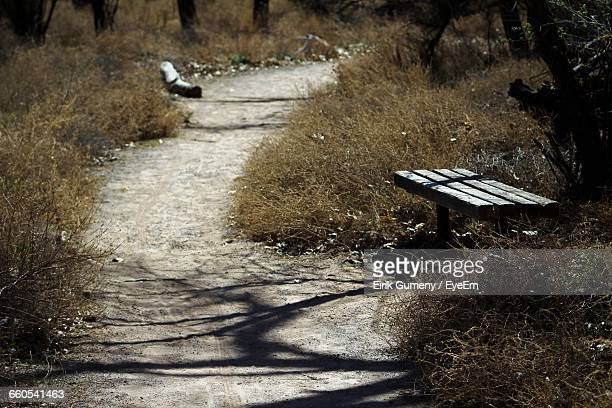 Narrow Footpath And Bench In Field