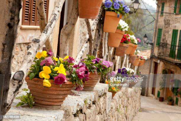Narrow lanes with houses and flower pots in Valldemossa