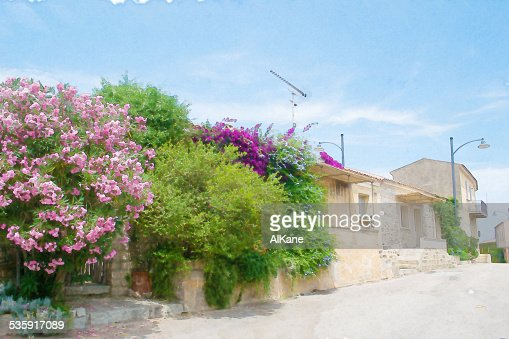 narrow street in San Pantaleo : Stock Photo