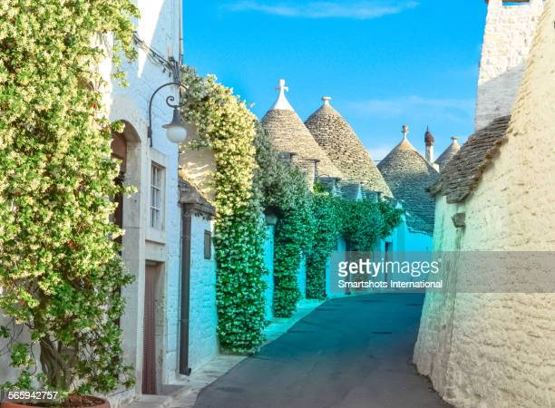 Narrow street with trulli houses in Alberobello