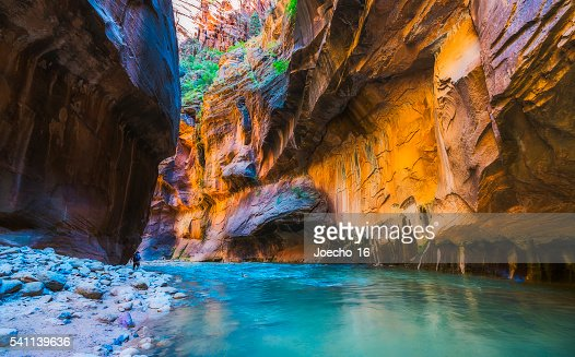 narrow with vergin river in Zion National park,Utah,usa. : Stock Photo