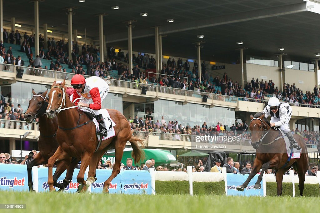Nash Rawiller riding Hidden Warrior wins Telstra Phonewords Stakes race during Cox Plate Day at Moonee Valley Racecourse on October 27, 2012 in Melbourne, Australia.