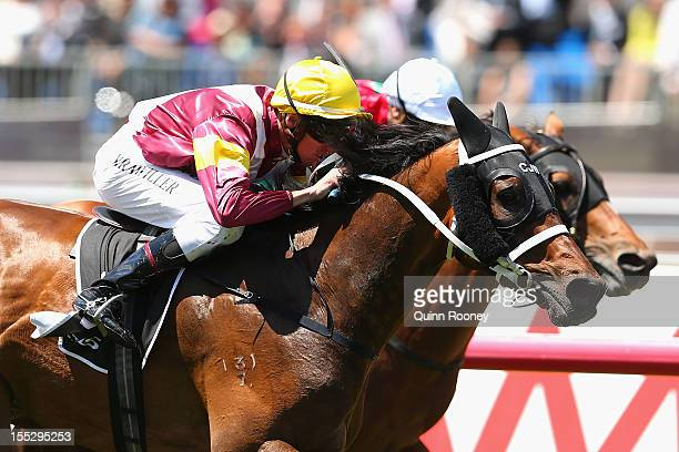 Nash Rawiller riding on Kellini crosses the line to win the Lexus Stakes during Victoria Derby Day at Flemington Racecourse on November 3 2012 in...