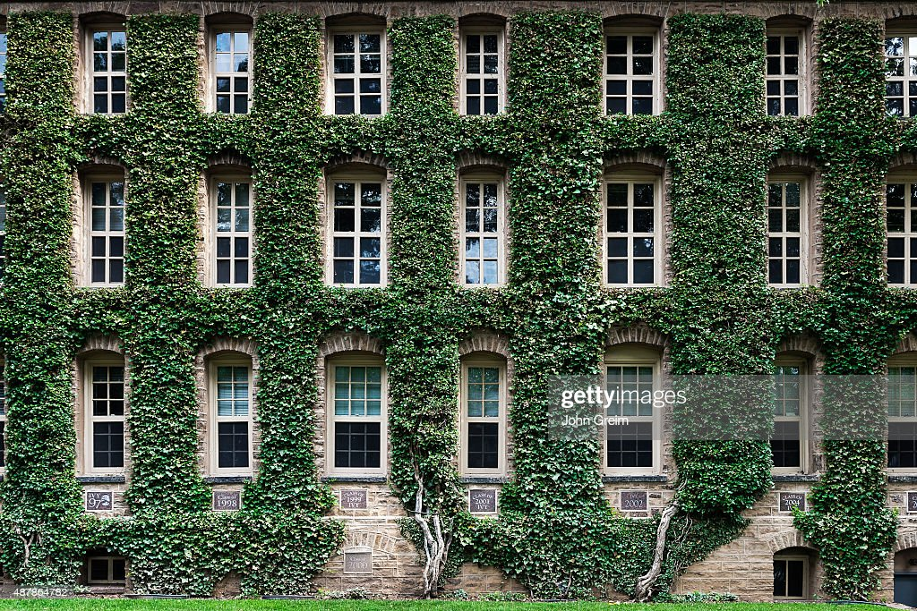 Princeton University?
