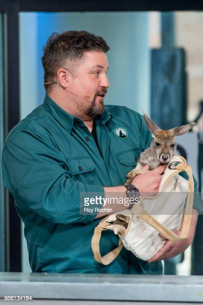 Nat Geo WILD host David Mizejewski discusses 'Pet Talk' with moderator Matt Forte and a a baby Red kangaroo during the build series at Build Studio...