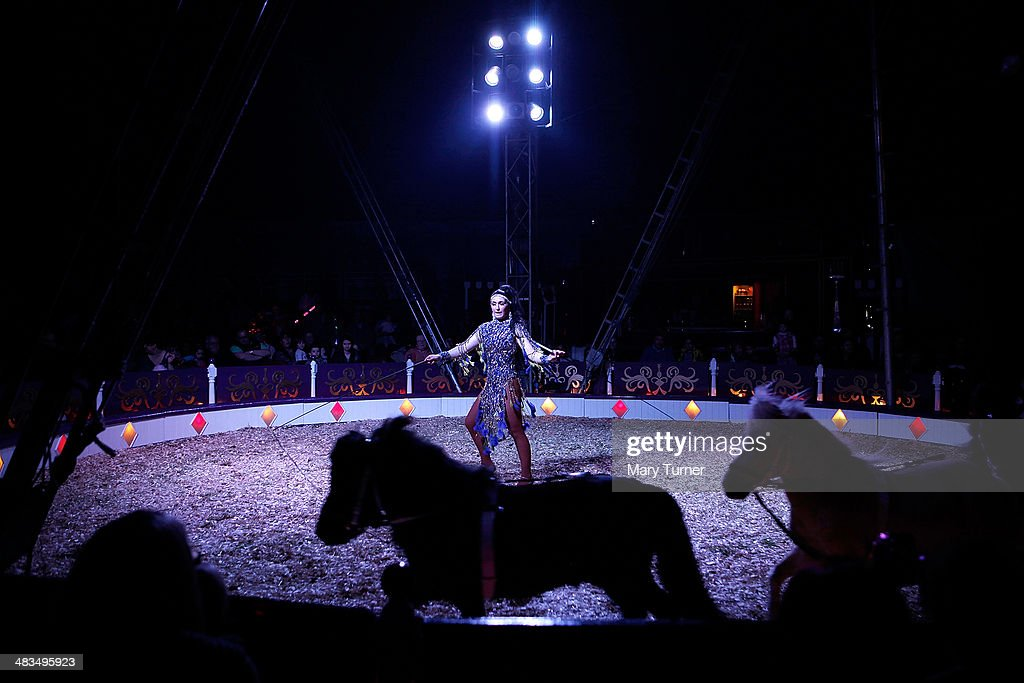 Natasha Lacey directs Shetland ponies in the circus ring during a performance on Mr Fips' Wonder Circus on April 7, 2014 in Huntingdon, England. Mr Fips Wonder Circus is a small, family run circus, who during their latest season will travel up the east of England until their season draws to a close in November. They are a company of around 20 performers, all family and friends from the circus community and their youngest member is 12 years old and their oldest is 75 years old. The troupe formed three years ago when Jan Erik Brenner and his wife Carolyn decided that they wanted to return the circus to the intimacy and magic of their childhood memories, and now play to audiences of between 100 and 500 adults and children.