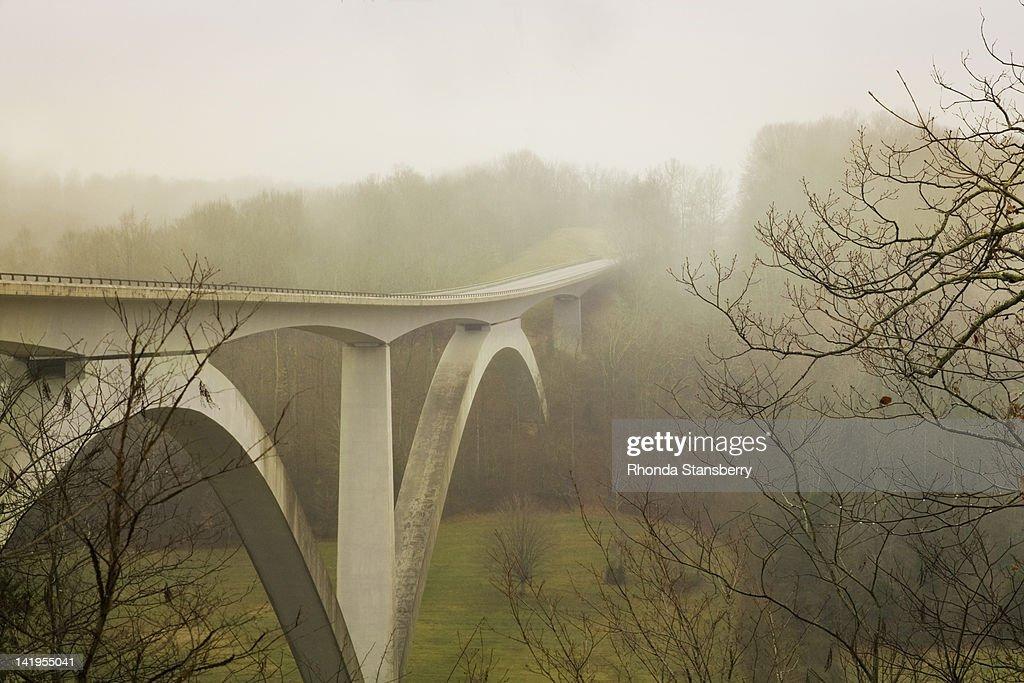 Natchez Trace Bridge : Stock Photo