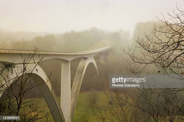 Natchez Trace Bridge