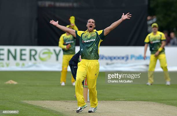 Nathan CoulterNile of Australia appeals to the umpires during the ODI cricket game between Ireland and Australia at Stormont cricket ground on August...
