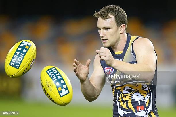 Nathan Foley handballs during a Richmond Tigers AFL training session at The Gabba on April 16 2014 in Brisbane Australia