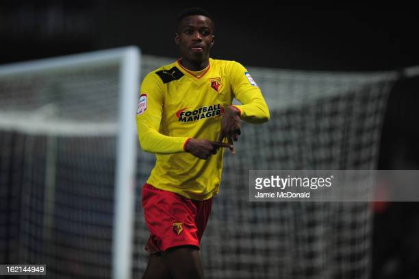 Nathaniel Chalobah of Watford celebrates his goal during the npower Championship match between Ipswich Town and Watford at Portman Road on February...