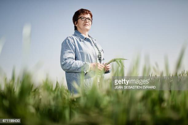 National Federation of Agricultural Holders's Unions new president Christiane Lambert poses in her pig farm on April 21 2017 in BouilleMenard western...
