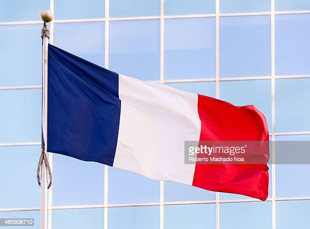 National flag of France It is a tricolour flag featuring three vertical bands of royal blue white and red with royal blue color at the host side