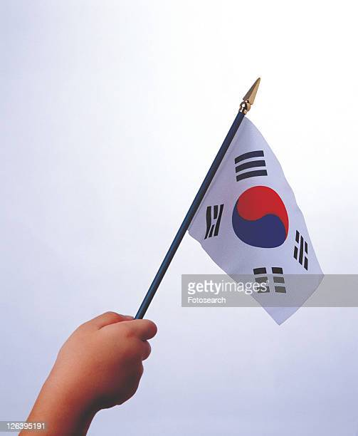 national, honor, patriotism, expression, pattern, fine