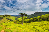 National Park of Bocaina, between São Paulo and Rio de Janeiro