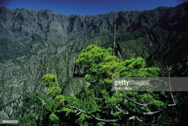 National Park of the Caldera de Taburiente View of a peak in the National Park of the Caldera de Taburiente in La Palma Island