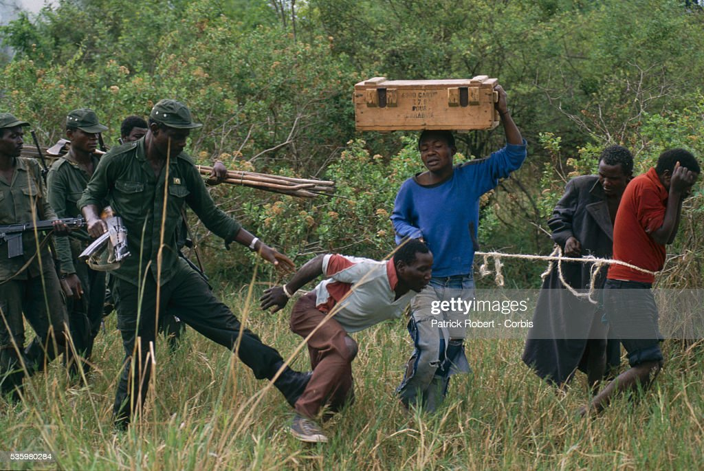 A National Parks Guard kicks a poacher who has just been arrested in Zaire. The national parks continue to struggle against the poaching of elephants and the traffic of ivory in Zaire (now the Democratic Republic of Congo).