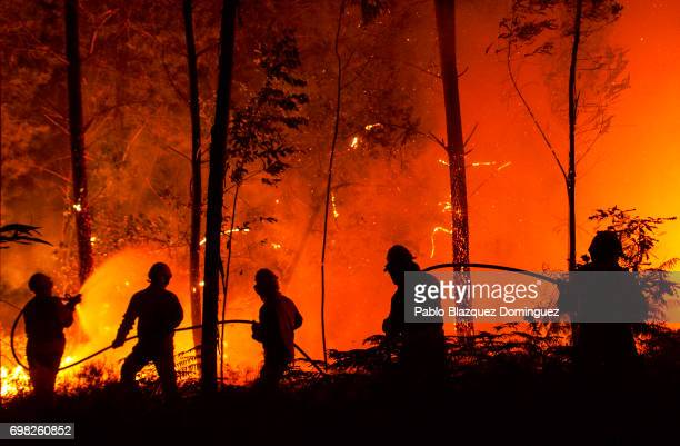 National Republican Guards GIPS and firefighters try to extinguish a fire in a forest after a wildfire took dozens of lives on June 19 2017 near...