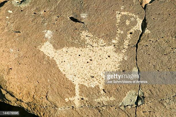 Native American petroglyphs featuring an image of a bird at Petroglyph National Monument outside Albuquerque New Mexico