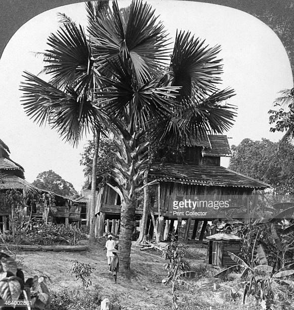 Native house built on piles Bhamo Burma 1908 Stereoscopic card Detail