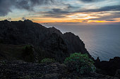 Native plants grow on the cliff faces in Valle Gran Rey on November 12 2014 in La Gomera Canary Island Spain