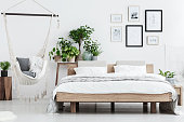 Plants behind wooden bed near hammock with pillows in natural bedroom with posters on white wall