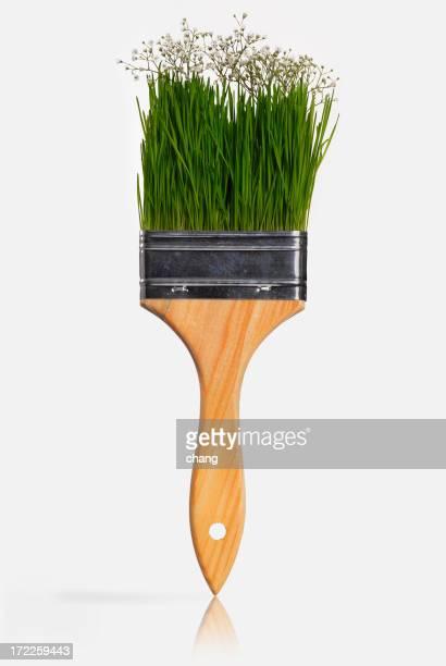 natural brush
