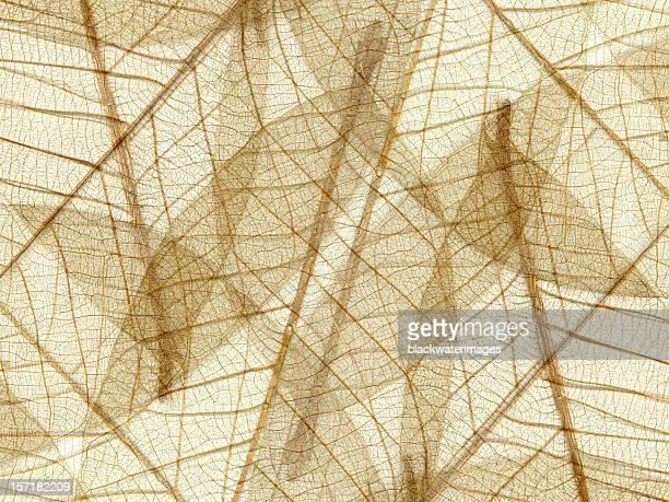 Natural fiber pattern