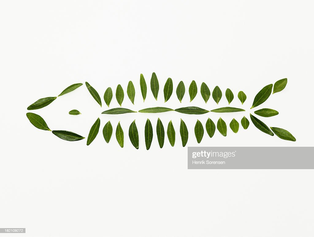 Natural food : Stock Photo