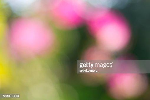 Natural de bokeh verde e Rosa fundo : Foto de stock