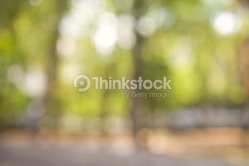 Natural green blurred background with beautifull bokeh : Stock Photo