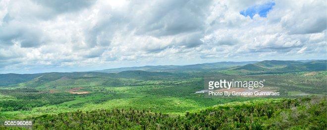 Natural Landscape : Foto de stock