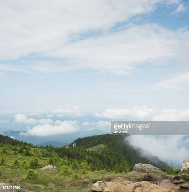 Natural landscape seen from top of the mountain