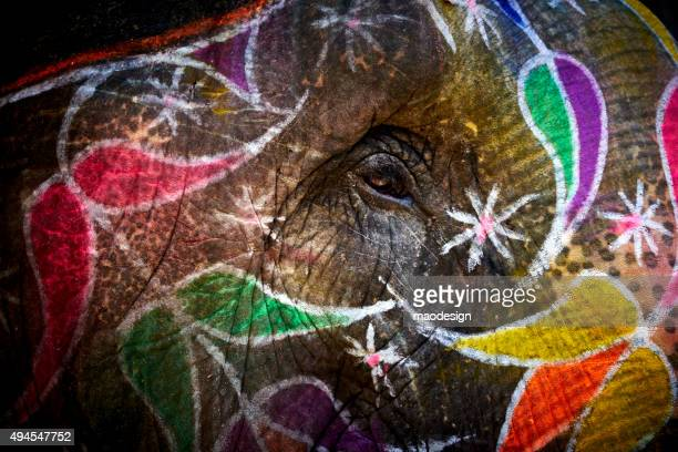 Natural Light Close-up of Colorful Painted Indian Elephant in India