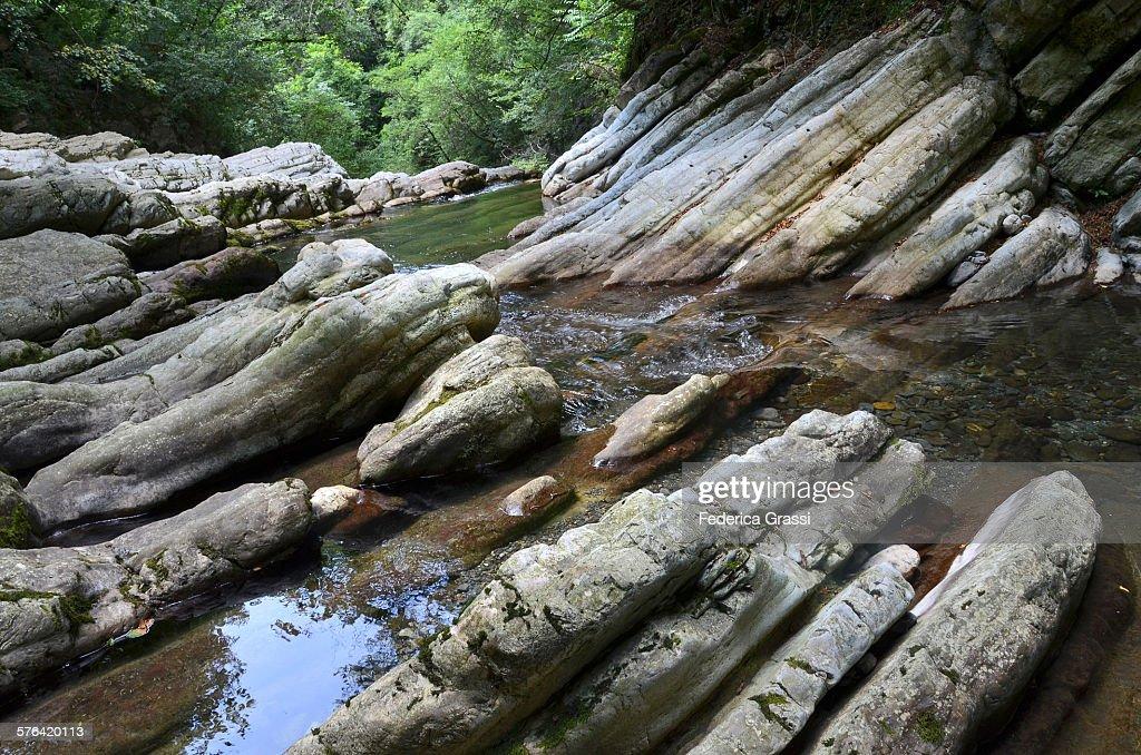 Natural Park of the Breggia Gorge