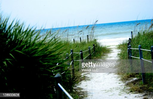 Natural pathway to beach : Stock Photo