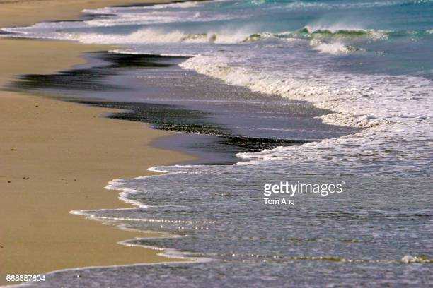 Natural patterns of waves on beach to use as backgrounds.