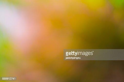 Natural yellow gold bokeh background : Stock Photo