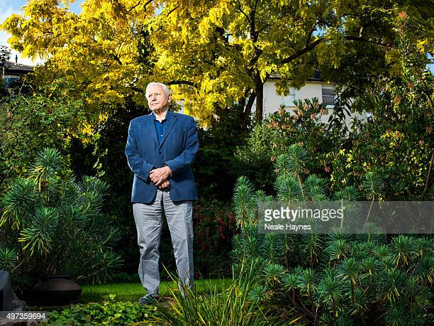 Naturalist and broadcaster David Attenborough is photographed for the Daily Mail on September 30 2015 in London England
