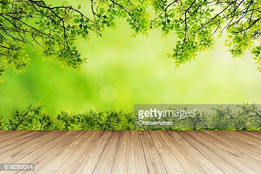 Fondo de la naturaleza. : Foto de stock