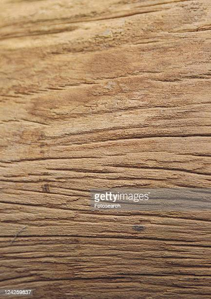 Nature, Grooved, Indoor, Natural Pattern, Close-Up, Wood Grains