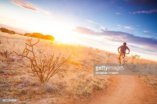 nature mountain biking landscape
